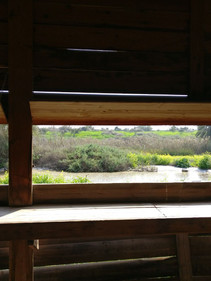 A Birdwatching station in Emrk haMayaano