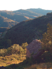 casa collina2.jpg