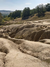 Mud Volcanoes, Berca