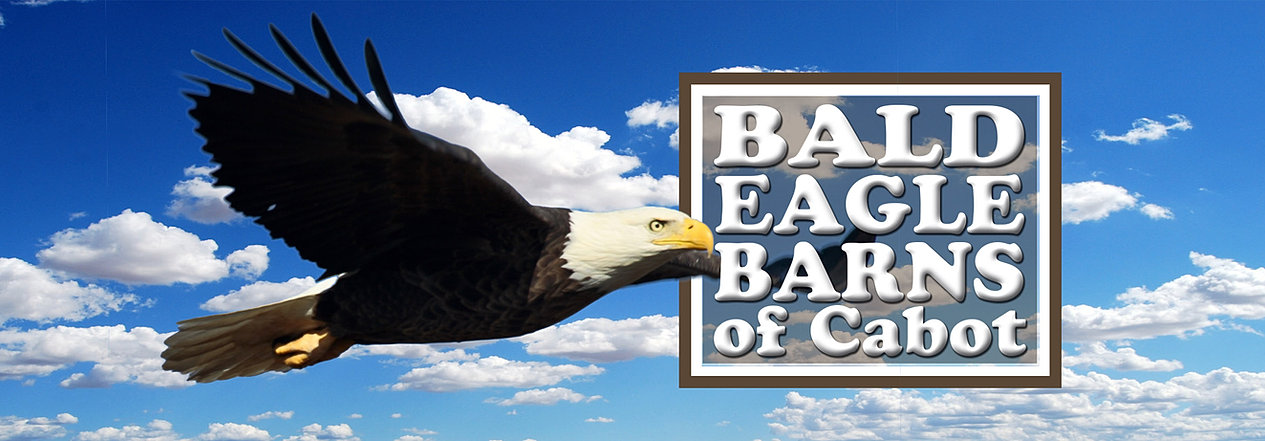 Cabins Saline County Bald Eagle Barns Of Cabot