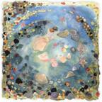 The Shell Garden'- Ori
