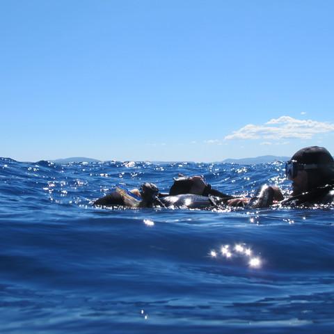 sécurité plongeur scaphandrier