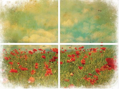 "Field of Flowers 32"" x 24"" PRE-ORDER"