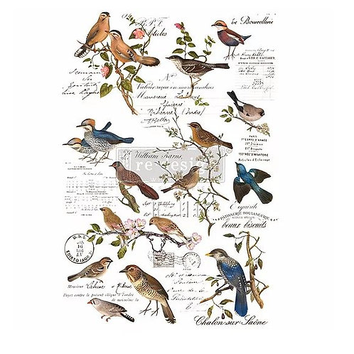Postal Birds - Redesign with Prima Transfer