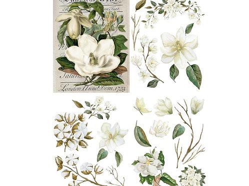 """Magnolia Garden 24"""" x 32"""" PRE-ORDER"""