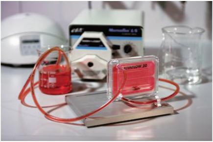 Laboratory Cross Flow Cassette / Vivaflow 50 / Sartorius