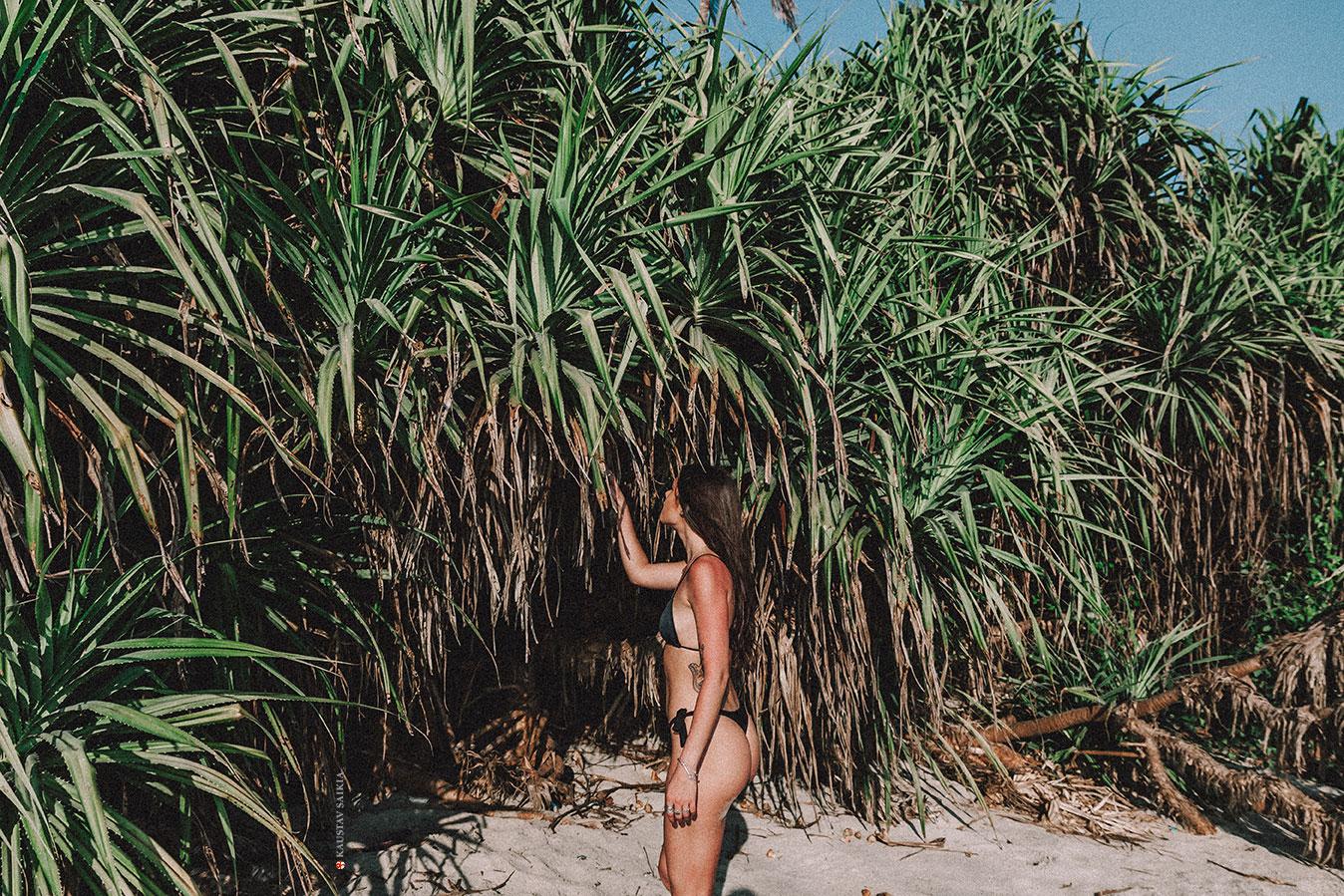 Raquel. 2019. Goa