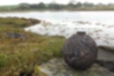 Lichen MJ on shoreline.JPG