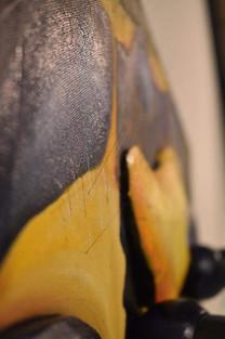 Wasp detail