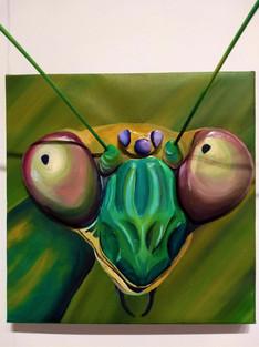 Mantis-close