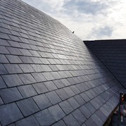 Roofing & Ventilation