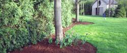 yard-helpers-mulch-1.jpg