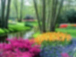 Yard Helpers creates beautiful gardens