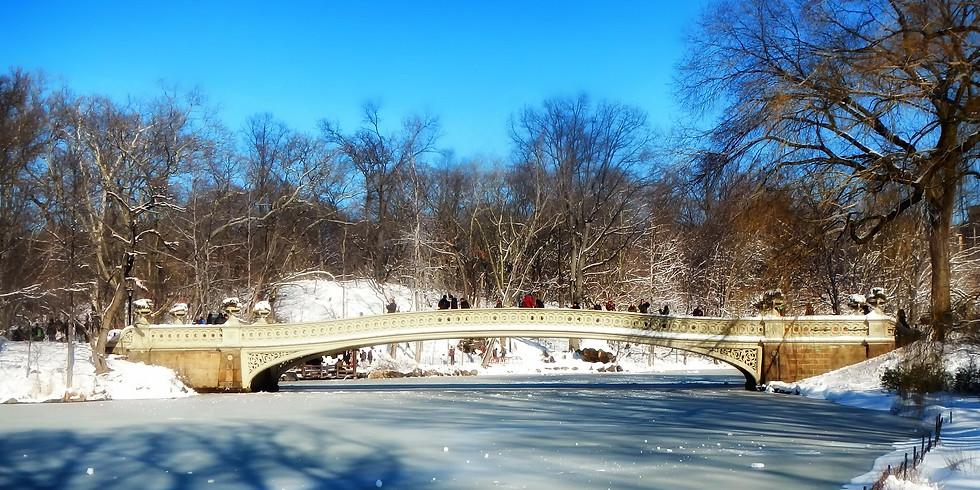 MANHATTAN RUN: Sunday Central Park no rush Run