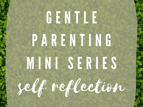 Becoming the Gentle Parent: Self Reflection