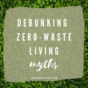 Zero Waste Myths DEBUNKED   Tips On A Gradual Switch To Zero Waste Lifestyle
