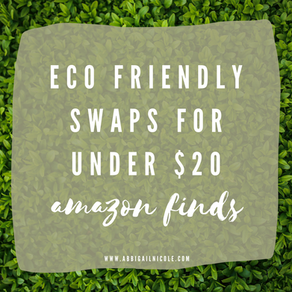 Eco Friendly Swaps Under $20   Amazon Finds