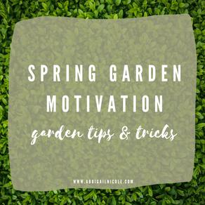 Beginner Gardener: How I'm Prepping for my Garden!
