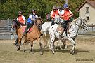 horseball02 (Copy).jpg