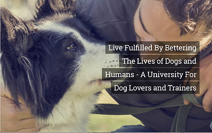 "Image of human bending down to touch noses with a dog. Text overlay ""Live Fulfilled by Bettering the Lives of Dogs and Humans - A University for Dog Lovers and Dog Trainers"