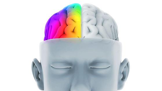 Kaleida Left Brain vs Right brain LR onl