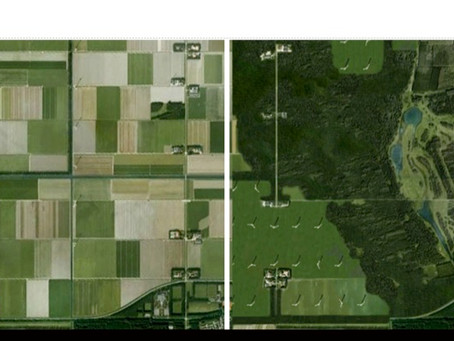 Smart Urban Farm