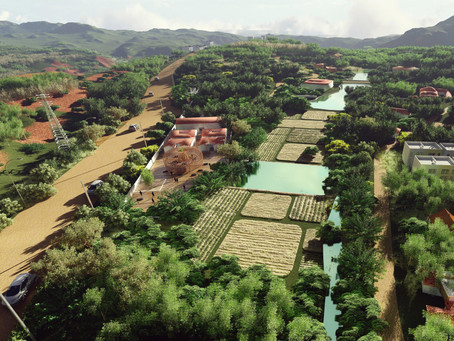 Understanding Rural China