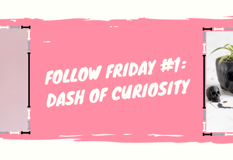FOLLOW FRIDAY #1: Dash of Curiosity!
