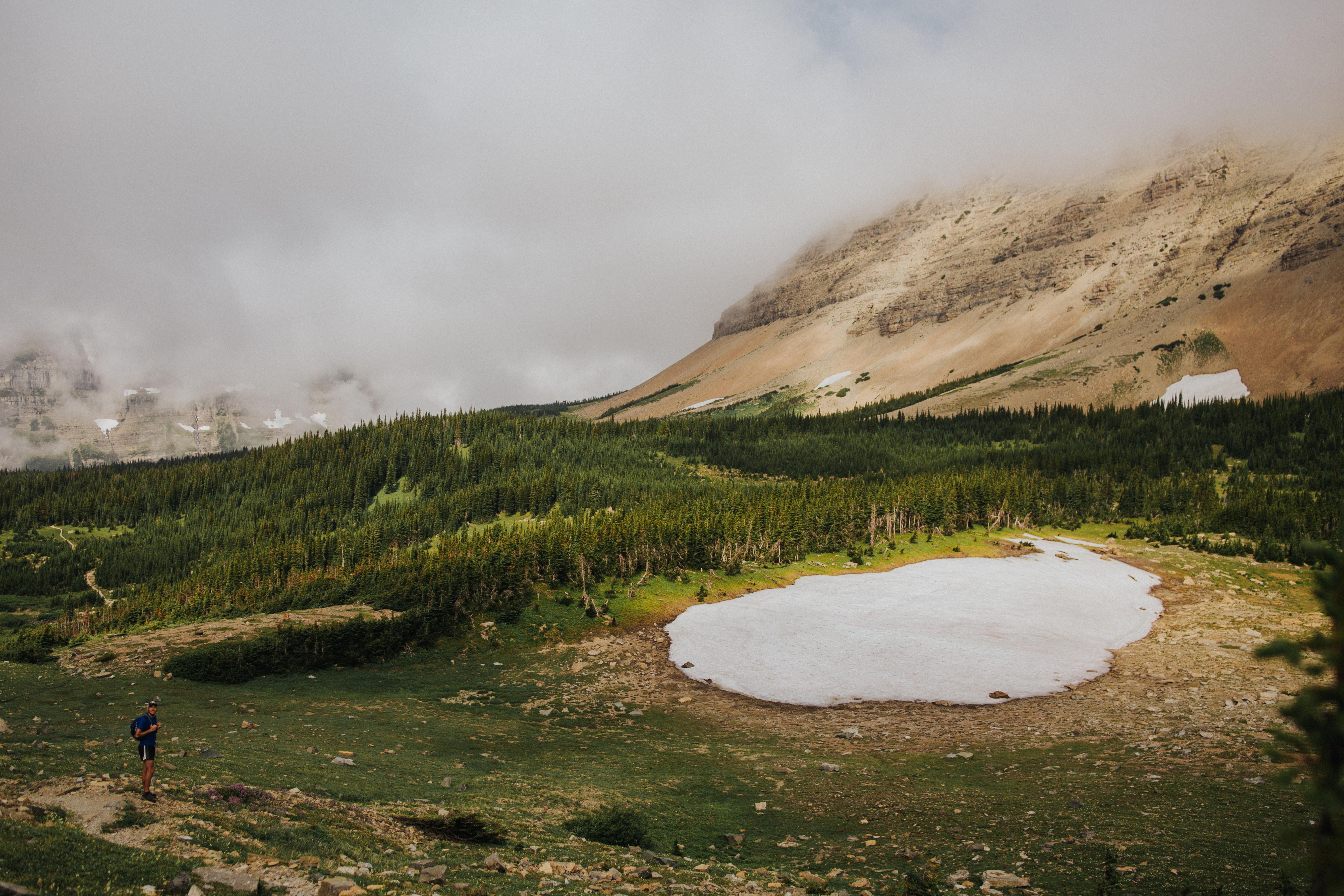 piegan pass glacier national park
