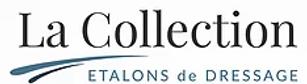 Logo jpeg.webp
