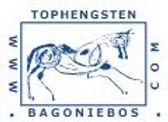 Logo Bagoniebos.jpg
