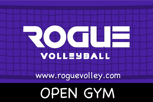 Adult Open Gym  $10