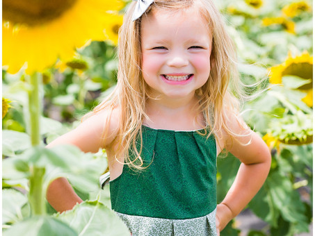 Sunflowers Fields with My Daughter