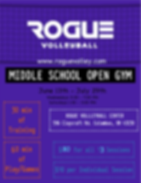 Rogue Flyer MS Open gym Flyer.png