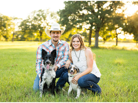 Tips on Including Dogs into Engagement Sessions