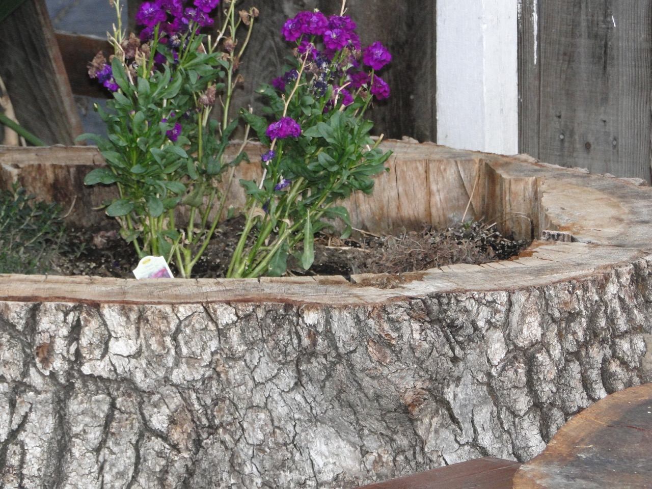 A1 Stump Reclaimed Furniture - 085