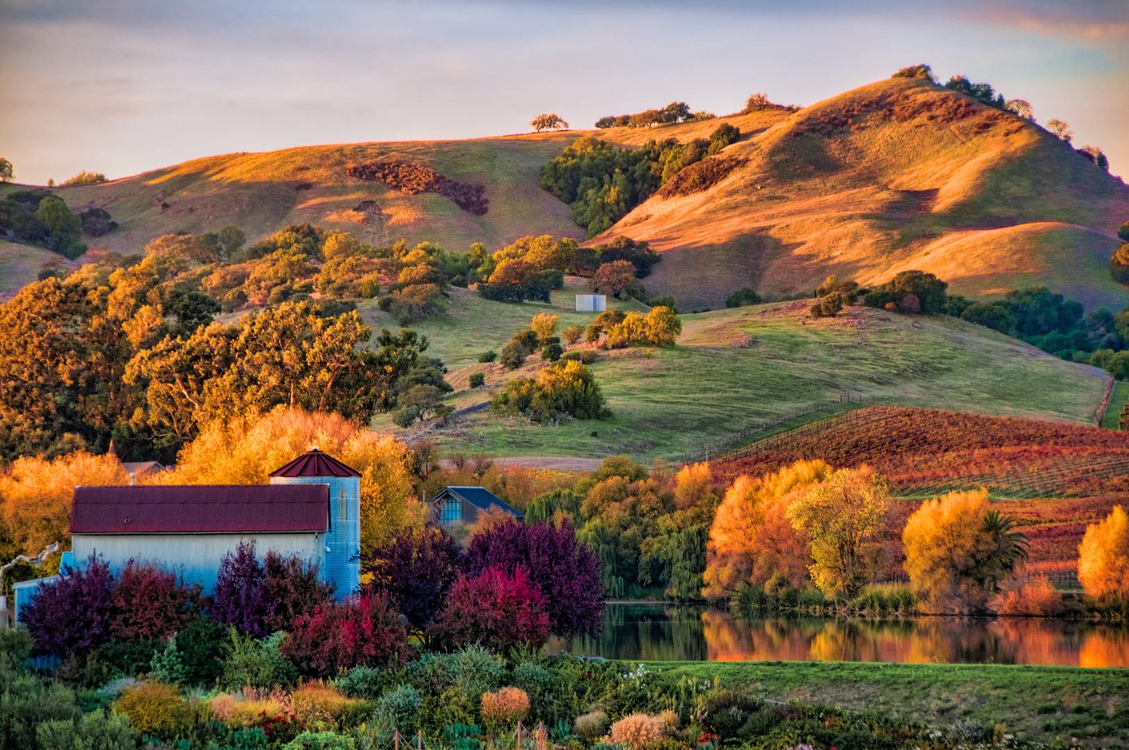 NAPA hills.jpg