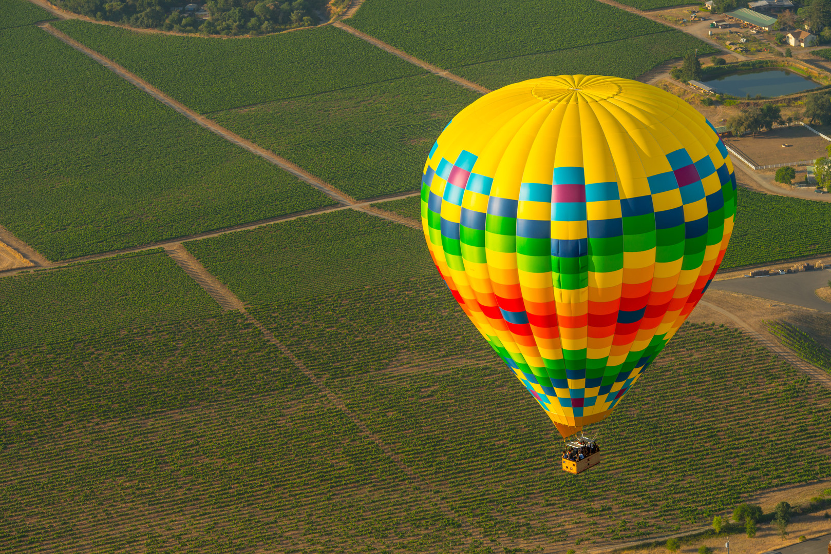 NAPA hot air balloon 5.jpg