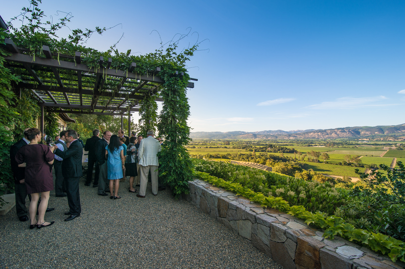 NAPA Group Party overlooking winery.jpg