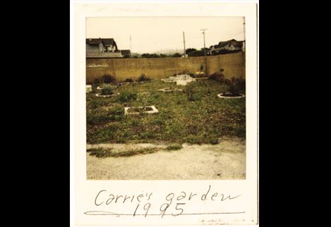 enso carrie-s garden-u5982