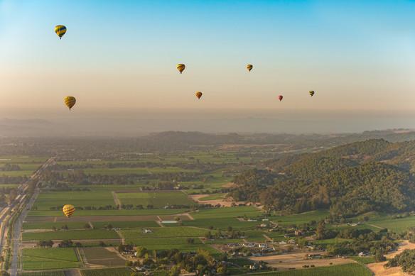NAPA hot air balloon 3.jpg