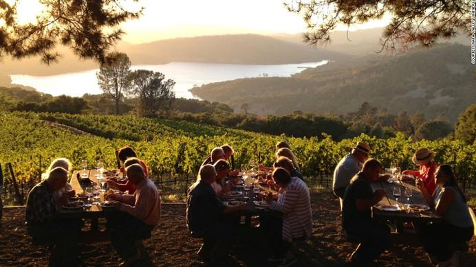 NAPA eating in the vineyards.jpg