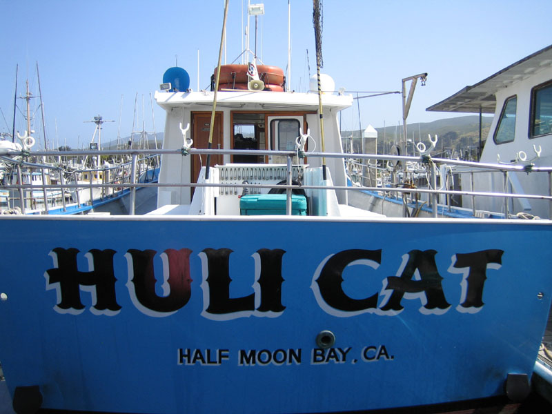 Huli Cat Princeton by The Sea