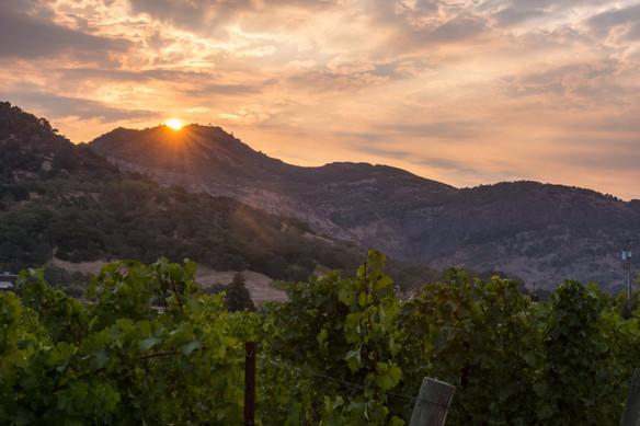 NAPA sunset1.jpg