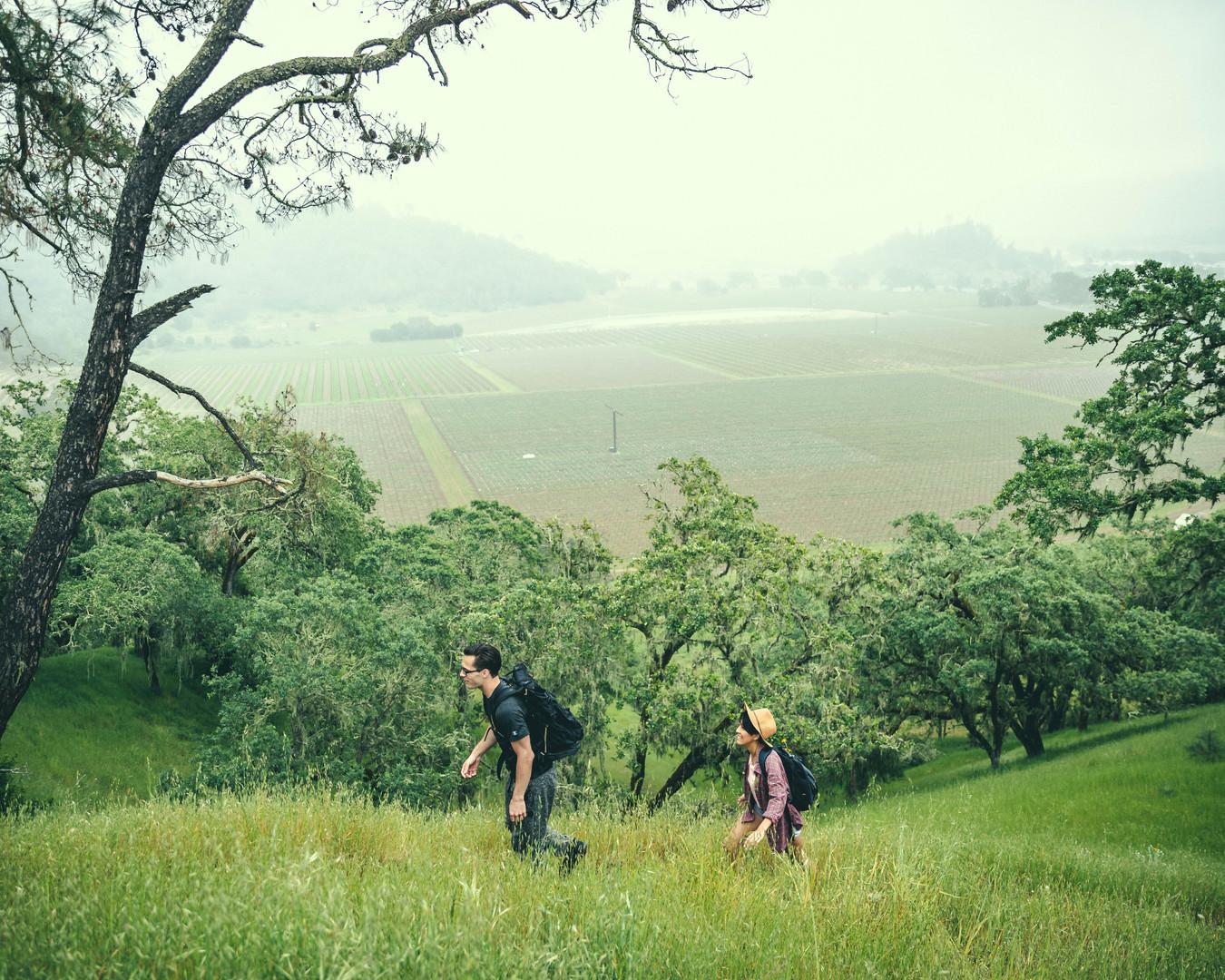 NAPA hiking.jpg