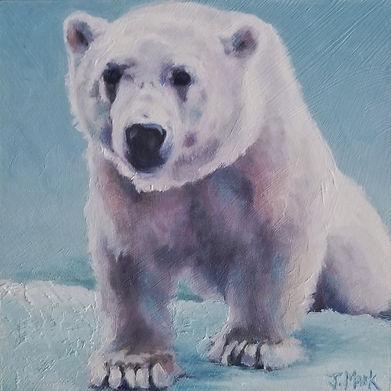 Polar Innocence