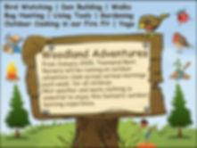 woodland adventures 2020 copy.jpg