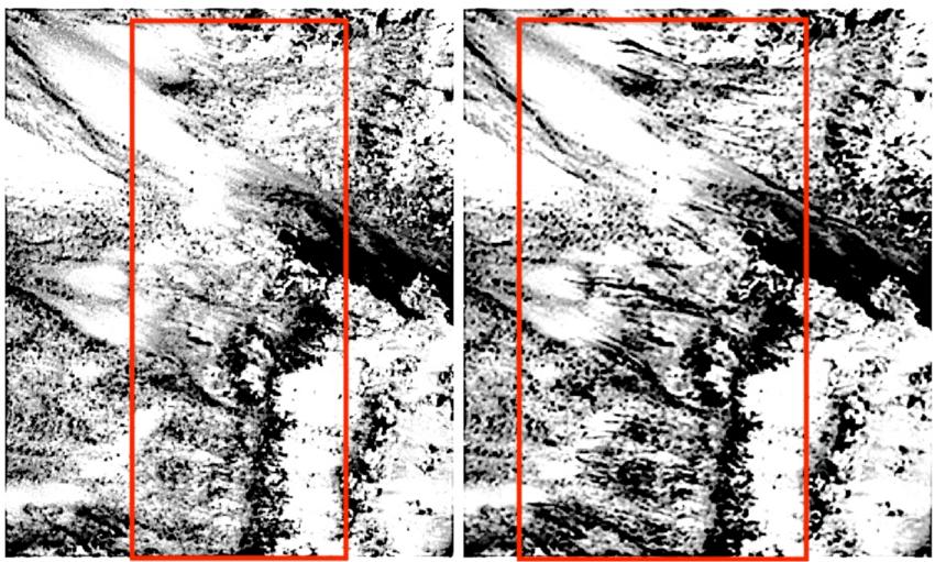 Image NASA HiRISE Photo.