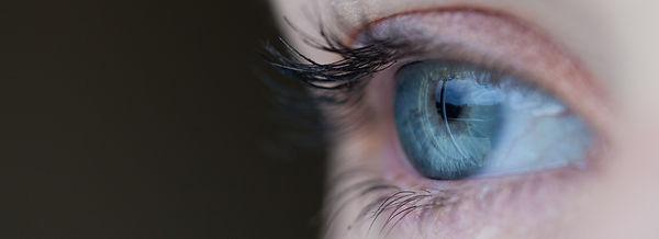 eye-allele.jpg