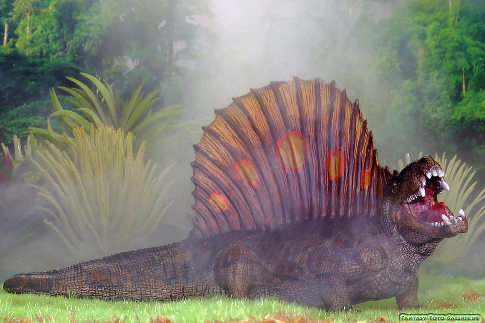 Dimetrodon milleri - Image Source: Dolkerheide